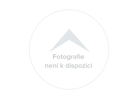 Volkswagen Golf 2,0TDI 4Motion